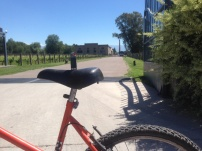 Cycling through wine country, Mendoza
