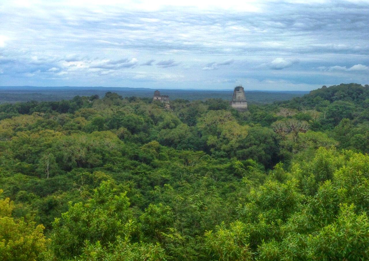 Discovering the jungle ruins of Tikal, Guatemala | Bades ...